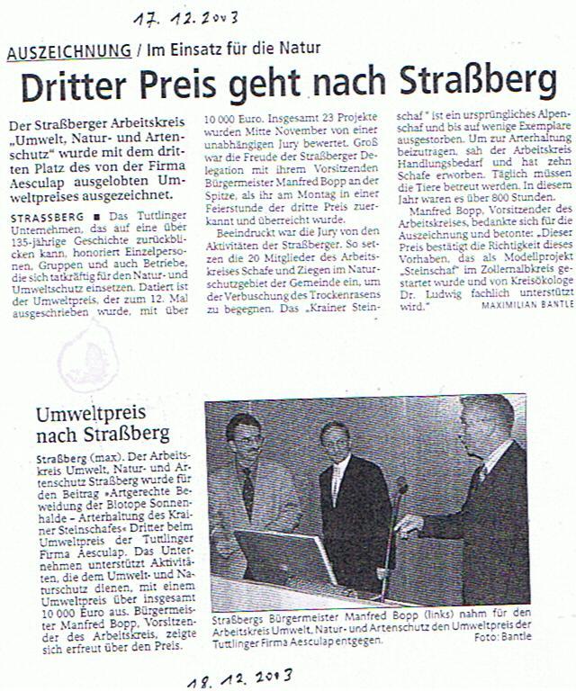 Steinschaf